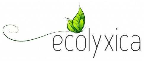 ecolyxica_logotype_color